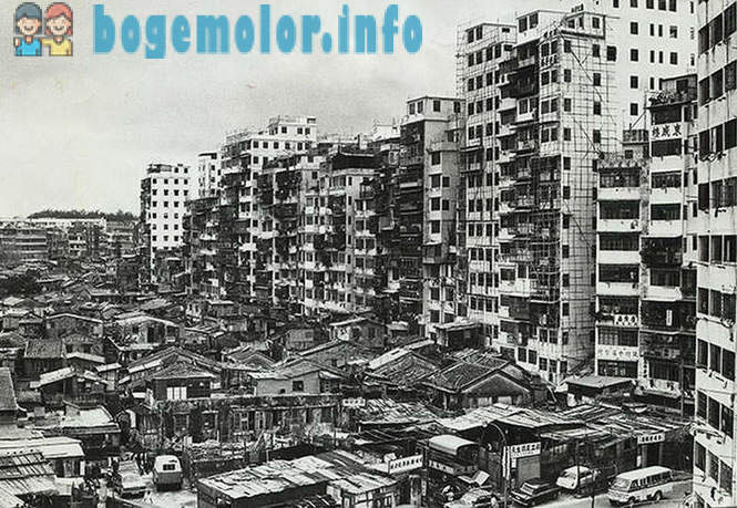 The history of the most densely populated area on the planet