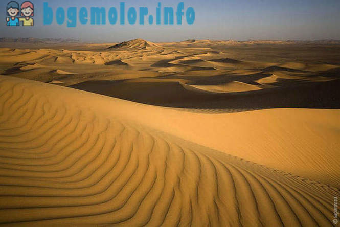 Journey through the Sahara desert